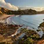 オークランドからフェリーで行ける島で1番良いのはどの島!?