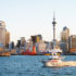 ニュージーランド留学を決める際の情報の調べ方と合う人・合わない人